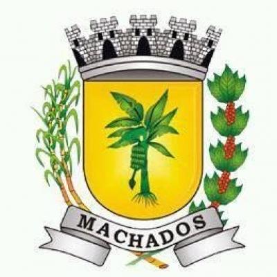 Brasão da cidade de Machados